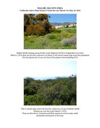 california native plant society cnpa study of bluffs preserve