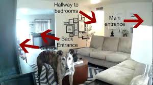 interior home security cameras protect your home with strategically placed security cameras