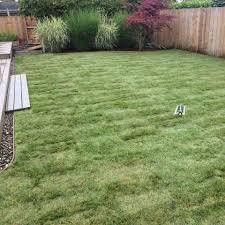 great lawns u0026 beyond testimonials