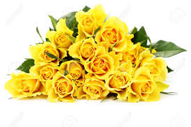 flowers and plants bunch of lovely yellow roses flowers and plants stock photo