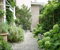 modele jardin contemporain small garden green home pinterest conception de jardin
