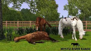 equus sims view topic mystic river ranch our youngster