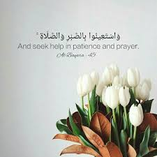 Flower And Love Quotes - 44 best islamic quotes images on pinterest islamic quotes