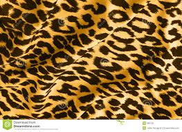 Cheetah Print Curtains by Animal Print On Fabric Royalty Free Stock Photos Image 660728