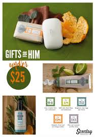 Best Gifts Under 25 by Holiday Gifts Under 25 Gifts Under 25 Extraordinary Gift Ideas For