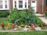 tips for growing a front yard vegetable garden veggie gardener