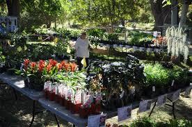Ucr Botanical Gardens Events Botanical Gardens Plant Sale R U Green