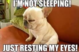Funny Sleep Memes - 30 most funny sleeping meme photos you have ever seen