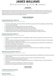 Free Resume Templates Online by 28 Free Resume Online Builder Free Resume Builder Software