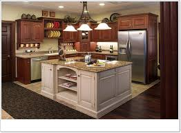 New Ideas For Kitchens Emejing New Kitchen Design Ideas Contemporary Liltigertoo