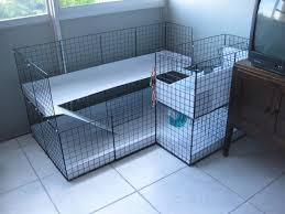 Rabbit Hutch Ramp 22 Best C And C Cages For The Piggers Images On Pinterest Guinea