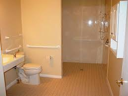 Delighful Bathroom Designs Handicapped Accessible Chair Shower - Bathroom designs for handicapped