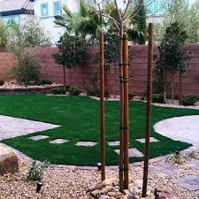 Backyard Bbq Las Vegas Best 25 Landscaping Las Vegas Ideas On Pinterest Succulent