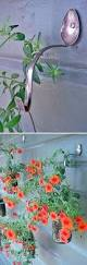 best 25 garden decorations ideas on pinterest water can decor