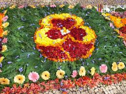 Madeira Flowers - flower carpets madeira flower festival 2017 blog madeira best