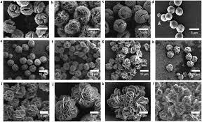 nanomaterials for biocatalyst immobilization u2013 state of the art