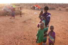 famine and ethiopia rising meme oromianeconomist