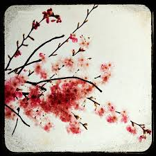 51 best new house colors images on pinterest cherry blossoms