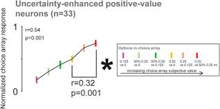 multiple mechanisms for processing reward uncertainty in the
