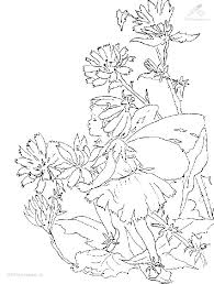 91 best coloring pages fairies images on pinterest coloring
