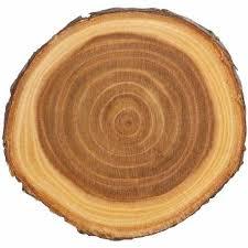 wood slab wood slabs