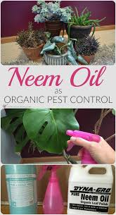 69 best garden pest control images on pinterest garden pests