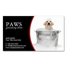 Easy Business Card Design 204 Best Business Card Images On Pinterest Business Cards