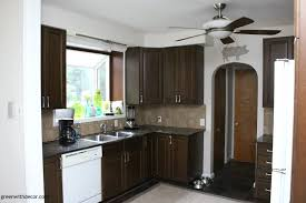 Kitchen Cabinet White Paint Colors Green With Decor The Painted Kitchen Aesthetic White