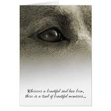 dog condolences dog sympathy wherever a beautiful soul has been card zazzle