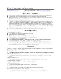 sample copy of a resume sample resume resumecom strikingly