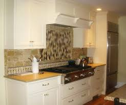 cool kitchen cabinet colors with stainless steel appliances