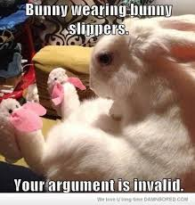 Angry Bunny Meme - bunny wearing bunny slippers funny rabbit meme picture