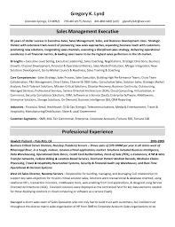 resume writing service review best resume help online best resume builder site 2017 best best executive resume writing services reviews