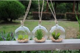 5inch glass globe terrariums hanging planter terrarium kit for