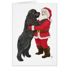 newfoundland cards greeting photo cards zazzle