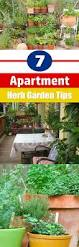 apartment herb garden 17 best images about garden ideas on