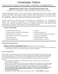Resume For Marketing Job Operating And Finance Executive Resume Sen Peppapp