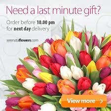 next day flowers 100 best mothers day 2016 images on s day