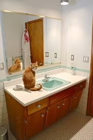 vintage bathroom design ideas vintage bathroom tile design ideas