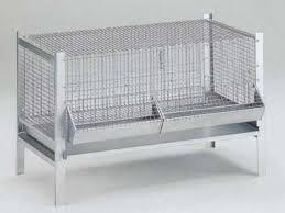 gabbia per pulcini gabbia per pulcini cm 100 x 50 x h 60