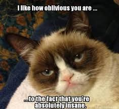 Frowning Meme - 887 best grumpy cat she s from arizona images on pinterest