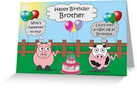 funny animals brother birthday hilarious rudy pig u0026 moody cow