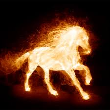fire horse i heart horses pinterest horse mythical