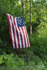 Alaska Flag Meaning Benefit Or Burden Alaska Militias Prep For Inevitable Challenges