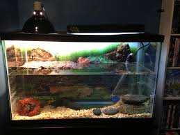 Aquarium For Home by Fish Tank Astounding Gallon Turtle Tank Photo Design Tall And