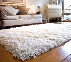 12x12 Area Rugs White Area Rugs White Area Rugs 8 10 Familylifestyle