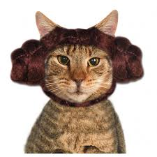 Pet Cat Halloween Costume Pet Princess Leia Cat Buns Pet Halloween Costumes