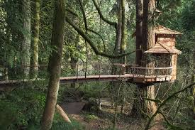 Coolest Treehouses 100 Treehouse Hotel Florida 5 Of The World U0027s Most