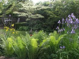make a shady rock garden in low maintenance ideas org garden trends