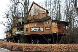 the most beautiful tree houses in the world interior design